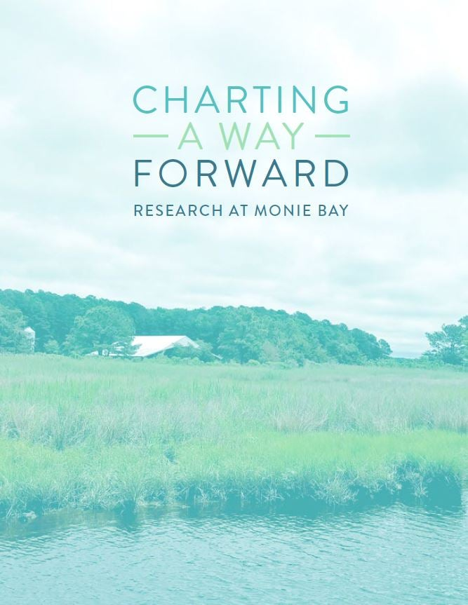 Charting a Way Forward, book cover