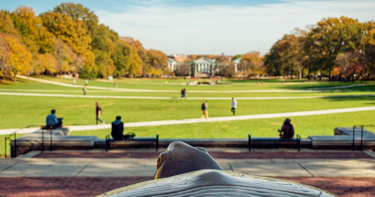 Testudo on McKeldin Mall